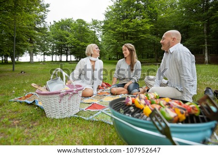 Caucasian group of friends in park with a bbq picnic - stock photo