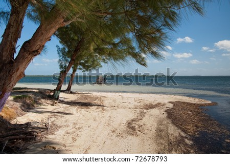 Cayman Kai Beach, Grand Cayman - stock photo