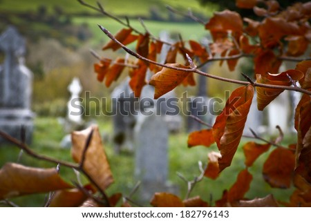 Celtic cementary in autumn time. - stock photo