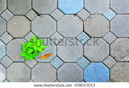 Cement block and weeds, background - stock photo