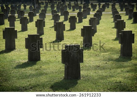 cemetary of anonymous war graves                                - stock photo
