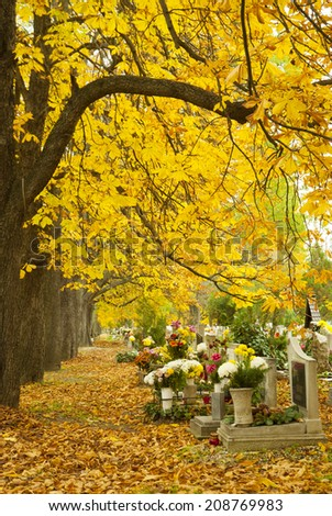 cemetery at fall, after all saints day - stock photo