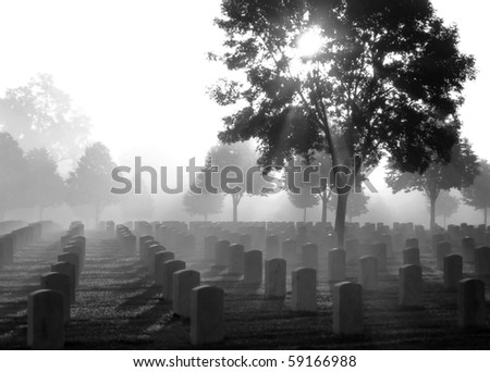 Cemetery on a foggy morning, black and white - stock photo