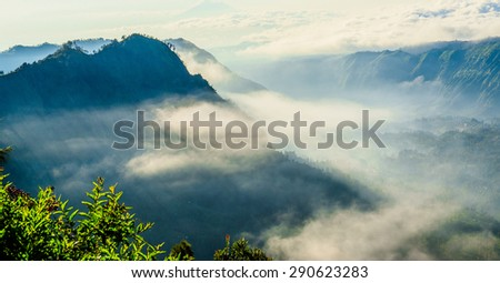 Cemoro Lawang in foggy moment with orange and yellow color. The magnificent view of Cemoro Lawang located in Bromo Tengger Semeru National Park, East Java, Indonesia. - stock photo