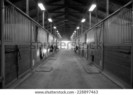 Center Path Through Horse Paddock Equestrian Ranch Stable - stock photo