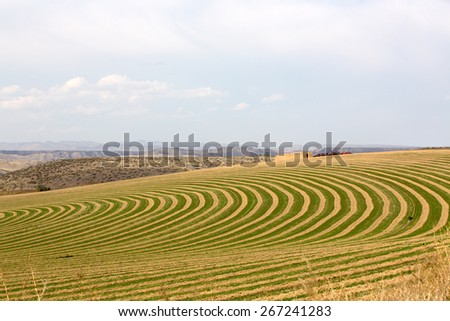 Center pivot irrigated farm showing a sloping field with alternating rows of planting with fallow to allow the rotation of the wheeled trusses carrying the sprinklers forming a curving pattern - stock photo