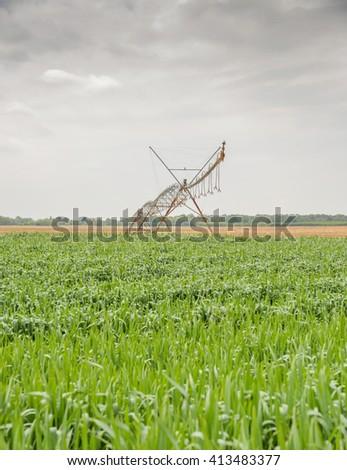 Center pivot irrigation system on a green field - stock photo