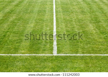 Center white lines of a playing field - stock photo