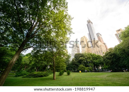 Central Park in New York City - stock photo