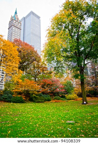 Central park in New York city during the fall - stock photo