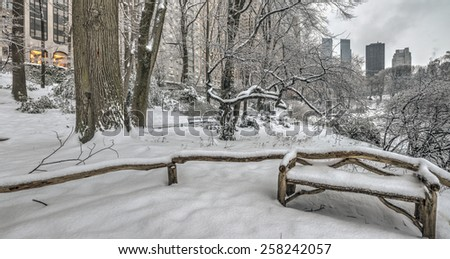Central Park, New York City after snow storm - stock photo