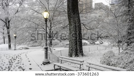 Central Park, New York City, Febuary 5th 2016, snow storm - stock photo