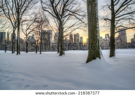 Central Park, New York City skyline in winter after snow storm - stock photo