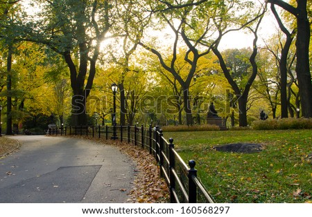 Central Park, New York City - Sunlight shines through golden fall tree leaves - stock photo