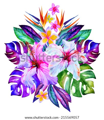 central tropical composition, hibiscus, plumeria, monstera, palm, bird of paradise, drawn in watercolor on white - stock photo