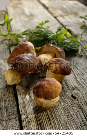 cep on wood background - stock photo