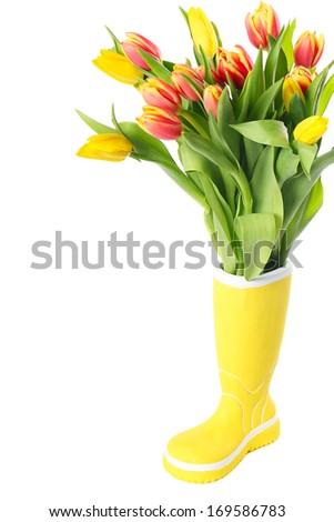 Ceramic boot vase with fresh tulips isolated on white background - stock photo