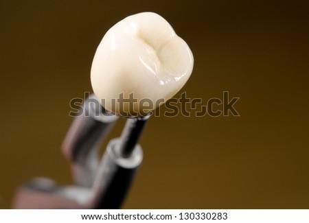 ceramic dental crown, tweezers (diagonal) - stock photo