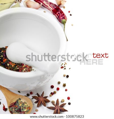 Ceramic Mortar with Pestle and fresh spices (with easy removable sample text) - stock photo