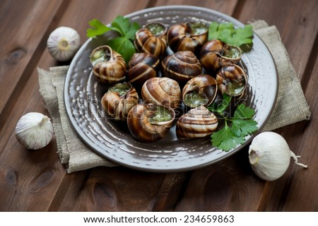 Ceramic plate with escargots de Bourgogne, garlic and parsley - stock photo