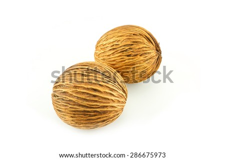 cerbera oddloam's seed, Pong pong seed or Othalanga - Suicide tree seed on white background - stock photo