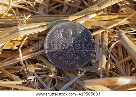 cereal farming field   - stock photo