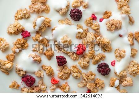 Cereals in yogurt - stock photo