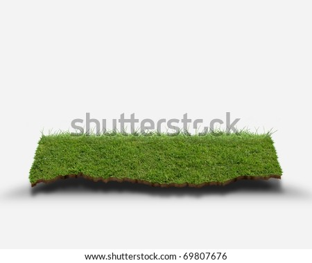 CG synthesis of shelf of lawn - stock photo