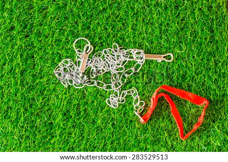 chain interpreter dogs on green grass texture background eco concept - stock photo