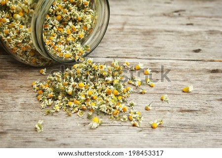 Chamomile Chamomile tea in the jar on the wooden table. - stock photo