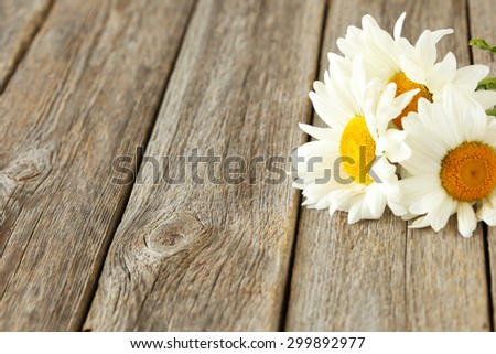 Chamomile flowers on a grey wooden background - stock photo