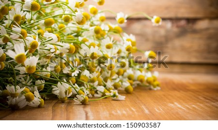Chamomile flowers on a wooden surface.  - stock photo