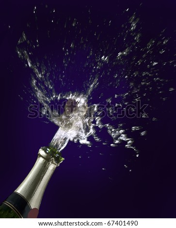 Champagne and cork - stock photo