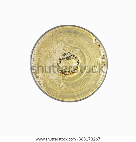 champagne bubbles top view - stock photo