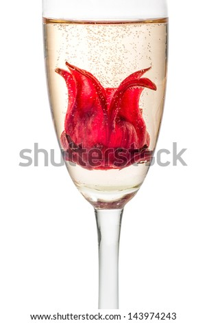 Champagne cocktail with hibiscus flower - stock photo