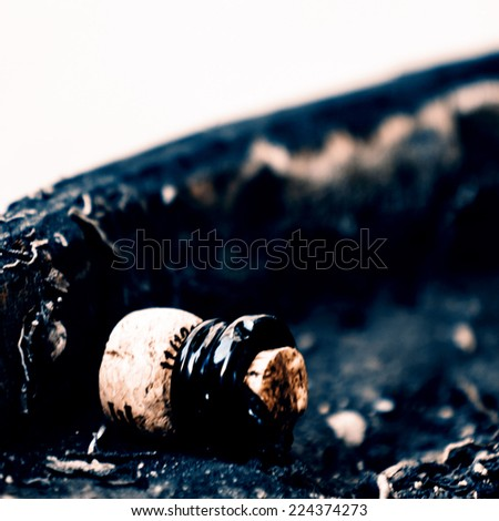 Champagne cork after cut - stock photo
