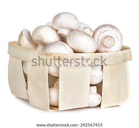 Champignon mushrooms in basket - stock photo
