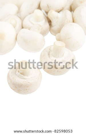 Champignon mushrooms isolated on white backround - stock photo
