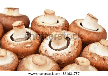 Champignon (True mushroom), isolated on white background - stock photo
