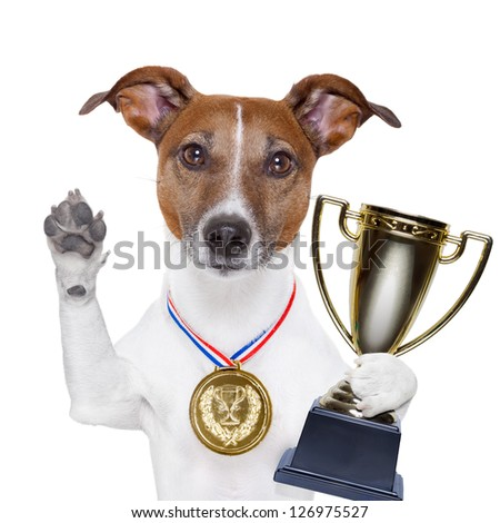 champion winning dog with a gold medal - stock photo
