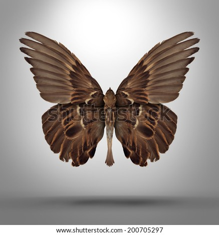 Change and adaptation concept with a an open wing bird shaped as a butterfly as a surreal symbol of new breed creative thinking and freedom to adapt to new challenges in business and life. - stock photo