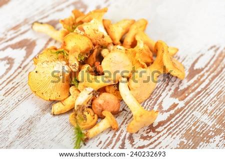 Chanterelle mushroom on textured vintage wooden background - stock photo