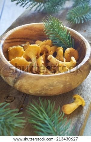 Chanterelles in wooden bowl - stock photo