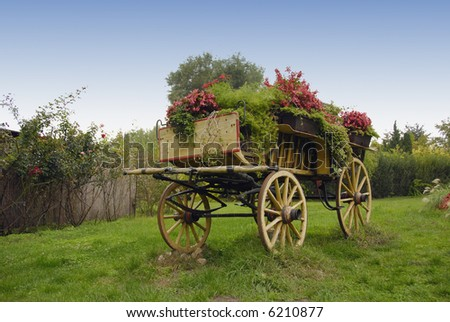 Chariot - stock photo