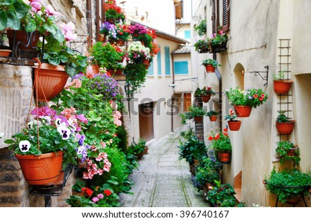 charming street decoration with plants and flowers in medieval town Spello (Umbria, Italy) - stock photo