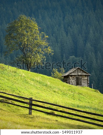 Charpatian mountain landscape with lonely wooden house under the tree - stock photo