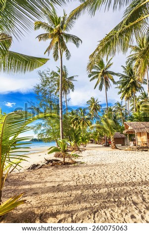 Cheap bungalows for backpackers on a tropical beach. Thailand - stock photo