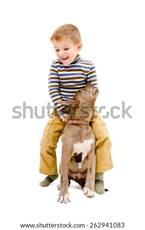 Cheerful boy playing with a puppy of breed pit bull isolated on white background - stock photo