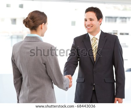 Cheerful businessman and businesswoman concluding a deal by shaking hands - stock photo