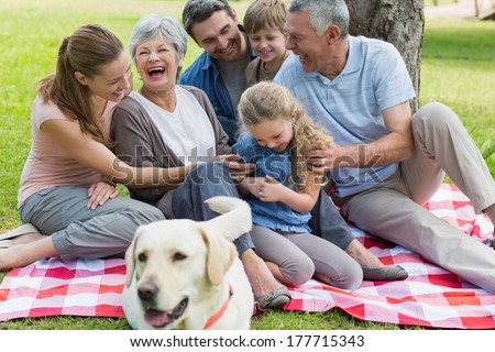 Cheerful extended family with pet dog sitting on picnic blanket at the park - stock photo